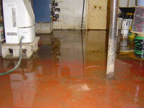 Secure Restoration in Montreat, North Carolina, 28711